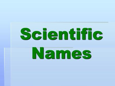 Scientific Names. QUICK REVIEW  A name used by scientists, especially the taxonomic name of an organism that consists of the genus and species.  Scientific.