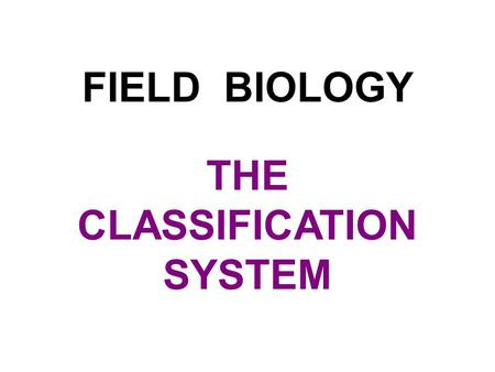 FIELD BIOLOGY THE CLASSIFICATION SYSTEM. BIOLOGY Bios (Greek) = Logos (Greek) = Life Study.