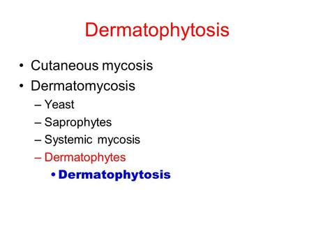 Dermatophytosis Cutaneous mycosis Dermatomycosis Yeast Saprophytes