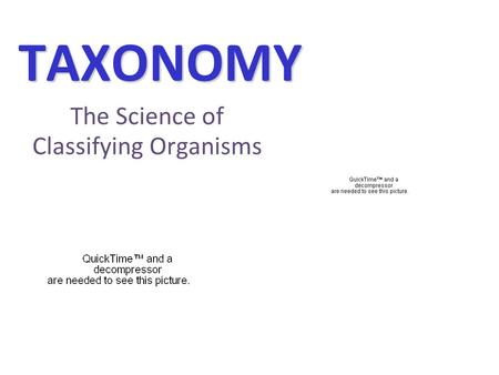 TAXONOMY The Science of Classifying Organisms. Why do we need to classify? Imagine a store…..how do you know where to find the milk or the cereal? Are.