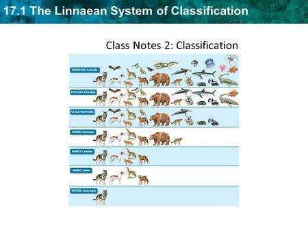 Class Notes 2: Classification