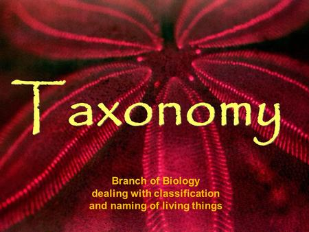 Taxonomy Branch of Biology dealing with classification and naming of living things.