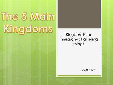 Scott Hillas <strong>Kingdom</strong> is the hierarchy of all living things.