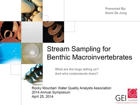 Stream Sampling for Benthic Macroinvertebrates What are the bugs telling us? And who understands them? Presented By: Grant De Jong Rocky Mountain Water.