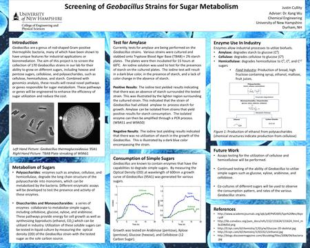 Screening of Geobacillus Strains for Sugar Metabolism Justin Cullity Adviser: Dr. Kang Wu Chemical Engineering University of New Hampshire Durham, NH Introduction.