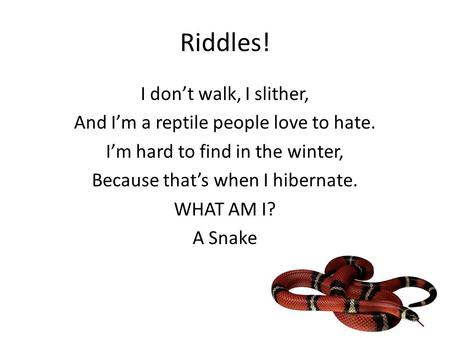 Riddles! I don't walk, I slither,
