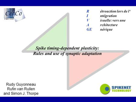 Spike timing-dependent plasticity: Rules and use of synaptic adaptation Rudy Guyonneau Rufin van Rullen and Simon J. Thorpe Rétroaction lors de l' Intégration.