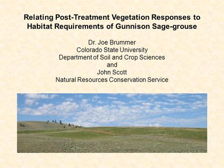 Relating Post-Treatment Vegetation Responses to Habitat Requirements of Gunnison Sage-grouse Dr. Joe Brummer Colorado State University Department of Soil.