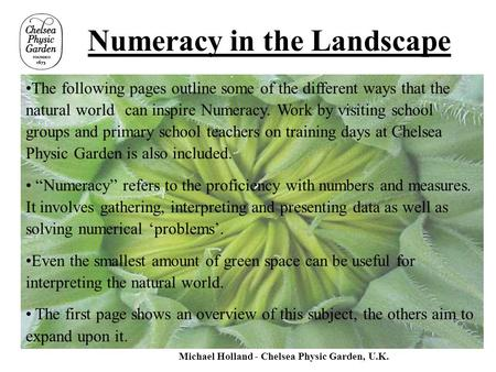 Numeracy in the Landscape The following pages outline some of the different ways that the natural world can inspire Numeracy. Work by visiting school groups.