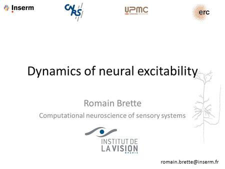 Romain Brette Computational neuroscience of sensory systems Dynamics of neural excitability.