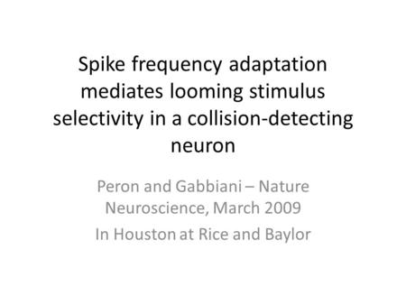 Spike frequency adaptation mediates looming stimulus selectivity in a collision-detecting neuron Peron and Gabbiani – Nature Neuroscience, March 2009 In.