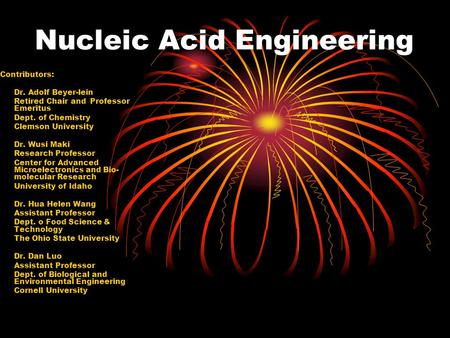 Nucleic Acid Engineering Contributors: Dr. Adolf Beyer-lein Retired Chair and Professor Emeritus Dept. of Chemistry Clemson University Dr. Wusi Maki Research.