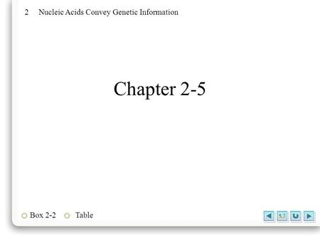 2 Nucleic Acids Convey Genetic Information Box 2-2Table Chapter 2-5.