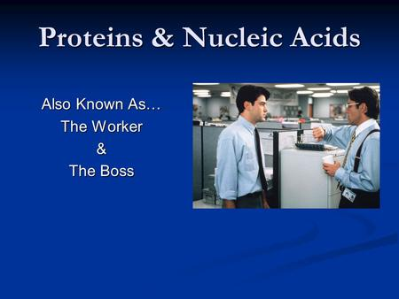 Proteins & Nucleic Acids Also Known As… The Worker & The Boss.