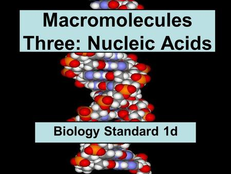 Macromolecules Three: Nucleic Acids Biology Standard 1d.