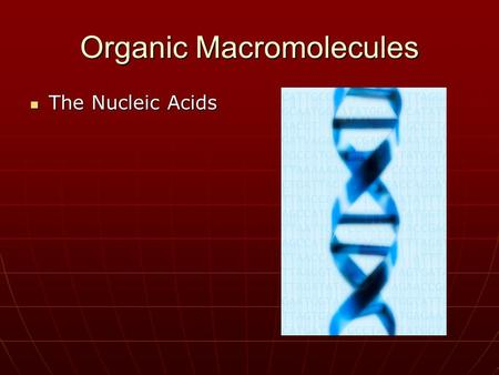 Organic Macromolecules The Nucleic Acids The Nucleic Acids.