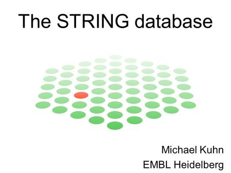 The STRING database Michael Kuhn EMBL Heidelberg.