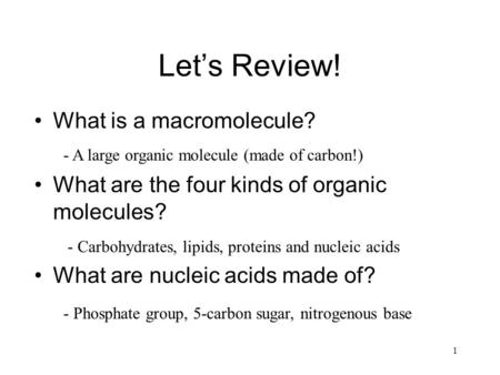 Let's Review! What is a macromolecule? What are the four kinds of organic molecules? What are nucleic acids made of? 1 - A large organic molecule (made.
