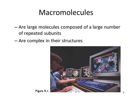 1 Macromolecules – Are large molecules composed of a large number of repeated subunits – Are complex in their structures Figure 5.1.