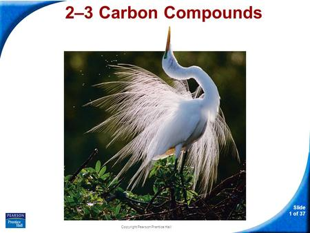 Slide 1 of 37 Copyright Pearson Prentice Hall 2–3 Carbon Compounds.