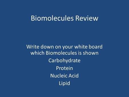 Biomolecules Review Write down on your white board which Biomolecules is shown Carbohydrate Protein Nucleic Acid Lipid.