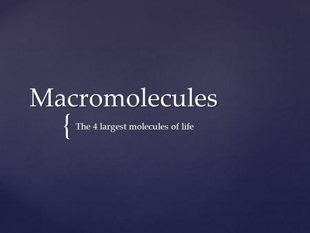 { Macromolecules The 4 largest molecules of life.