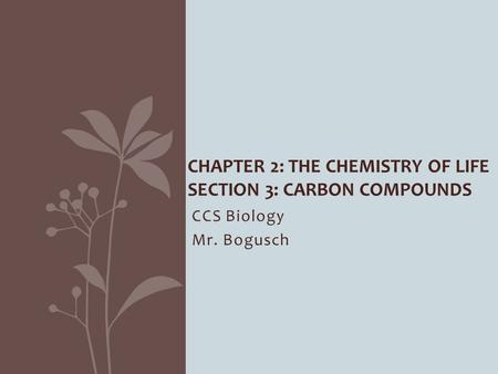 CCS Biology Mr. Bogusch CHAPTER 2: THE CHEMISTRY OF LIFE SECTION 3: CARBON COMPOUNDS.