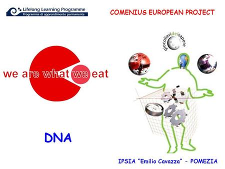 "DNA COMENIUS EUROPEAN PROJECT IPSIA ""Emilio Cavazza"" - POMEZIA."