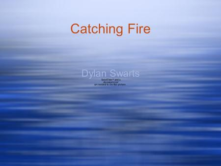 Catching Fire Dylan Swarts. Suzanne Collins Born in New Jersey in 1963 Now lives in Connecticut Went to New York University Wrote Hunger Games Trilogy.