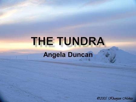 Angela Duncan.  Located above the Arctic Circle  Stretches from northern Scandinavia, across Russia, Siberia, Northern Alaska, and finally to Canada.