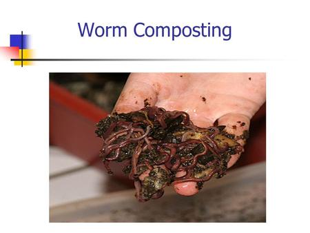 Worm Composting. Vermicomposting WHAT – Process of using worms to recycle organic material and food scraps into worm compost, or vermicompost (vermiculture)