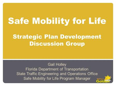 Safe Mobility for Life Strategic Plan Development Discussion Group Gail Holley Florida Department of Transportation State Traffic Engineering and Operations.