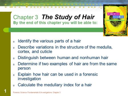 Identify the various parts of a hair