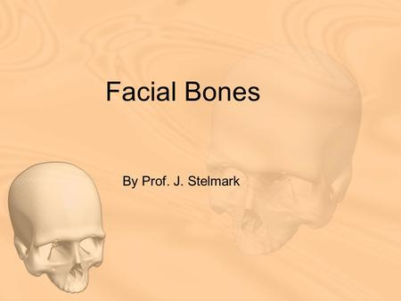 Facial Bones By Prof. J. Stelmark. LATERAL POSITION—RIGHT OR LEFT LATERAL: FACIAL BONES Pathology Demonstrated Fractures and neoplastic/inflammatory processes.