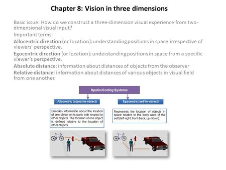 Chapter 8: Vision in three dimensions Basic issue: How do we construct a three-dimension visual experience from two- dimensional visual input? Important.