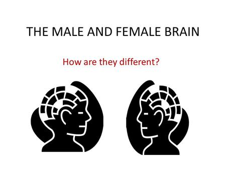 THE MALE AND FEMALE BRAIN How are they different?.