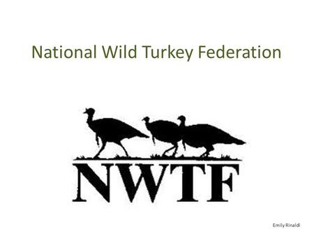 National Wild Turkey Federation Emily Rinaldi. The History On March 28, 1973, the Commonwealth of Virginia issued incorporation papers to a fledgling.