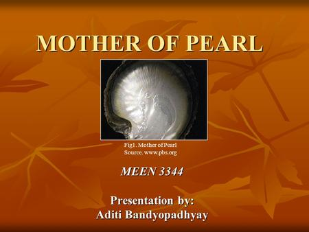 MOTHER OF PEARL MEEN 3344 Presentation by: Aditi Bandyopadhyay Fig1. Mother of Pearl Source. www.pbs.org.