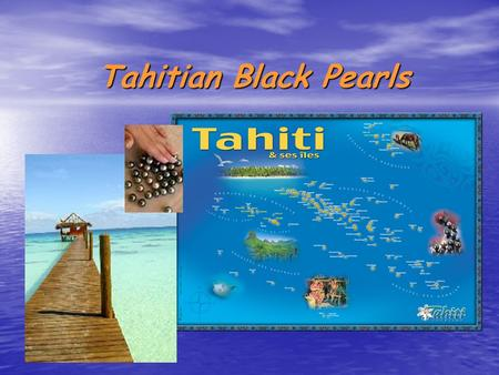 Tahitian Black Pearls. The Black Pearl in French Polynesia A symbol A symbol The pearl of Tahiti, Te Poe in Tahitian, is, with the tiara, the symbol of.
