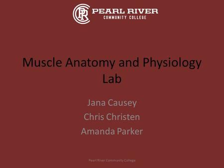 Muscle Anatomy and Physiology Lab