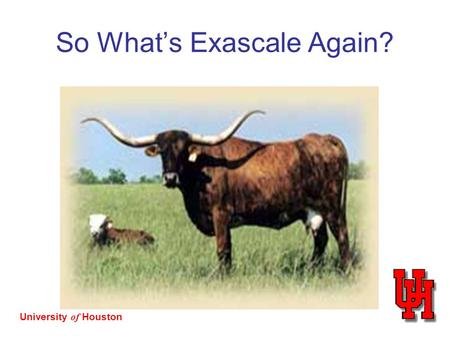 University of Houston So What's Exascale Again?. University of Houston The Architects Did Their Best… Scale of parallelism Multiple kinds of parallelism.