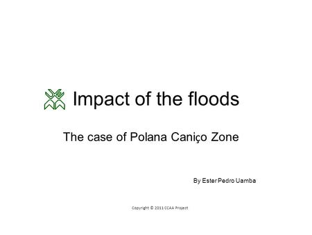 Impact of the floods The case of Polana Cani ç o Zone By Ester Pedro Uamba Copyright © 2011 CCAA Project.