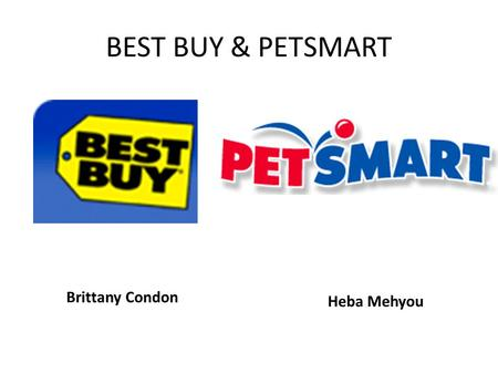 BEST BUY & PETSMART Brittany Condon Heba Mehyou. Best Buy's Financial Analysis 2008 $Ms 2007 $Ms Net Sales45,01540,023 Gross Profit10,998 24.4%9,546 23.9%