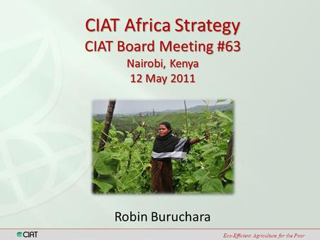 Eco-Efficient Agriculture for the Poor Robin Buruchara CIAT Africa Strategy CIAT Board Meeting #63 Nairobi, Kenya 12 May 2011.