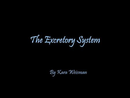 The Excretory System By Kara Weisman.