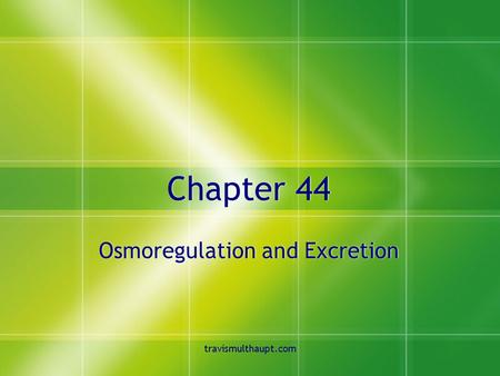 Travismulthaupt.com Chapter 44 Osmoregulation and Excretion.