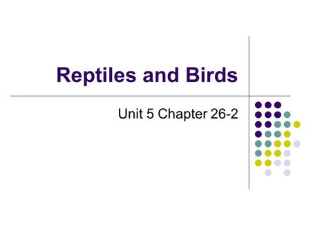 Reptiles and Birds Unit 5 Chapter 26-2. Reddish-Brown Frilled Lizard