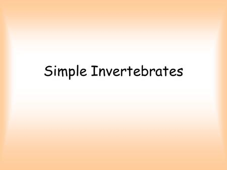 Simple Invertebrates. Is a snake an invertebrate?