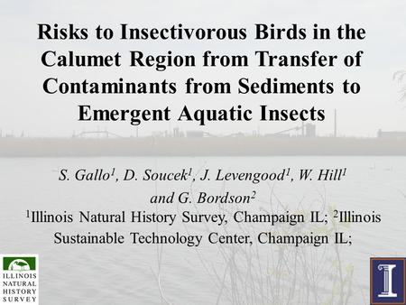 Risks to Insectivorous Birds in the Calumet Region from Transfer of Contaminants from Sediments to Emergent Aquatic Insects S. Gallo 1, D. Soucek 1, J.