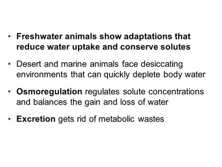 Freshwater animals show adaptations that reduce water uptake and conserve solutes Desert and marine animals face desiccating environments that can quickly.